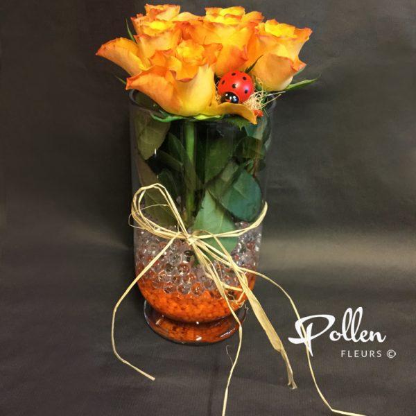 Roses avec Vase pour anniversaire ou pour le plaisir à Le Mans
